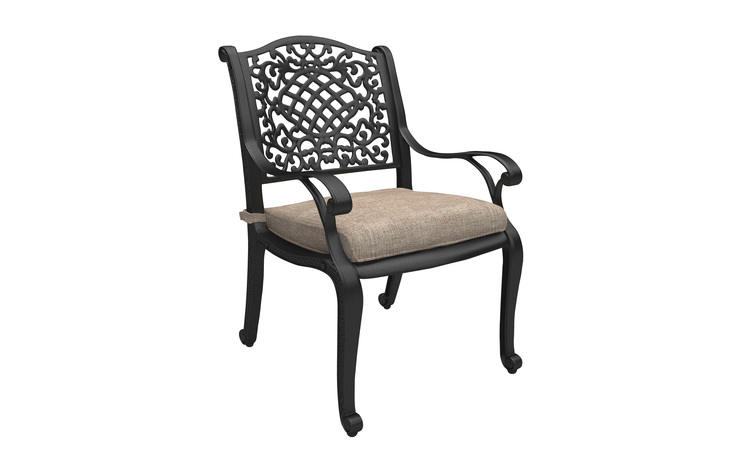 P559-601A ROSE VIEW CHAIR WITH CUSHION (2/CN)